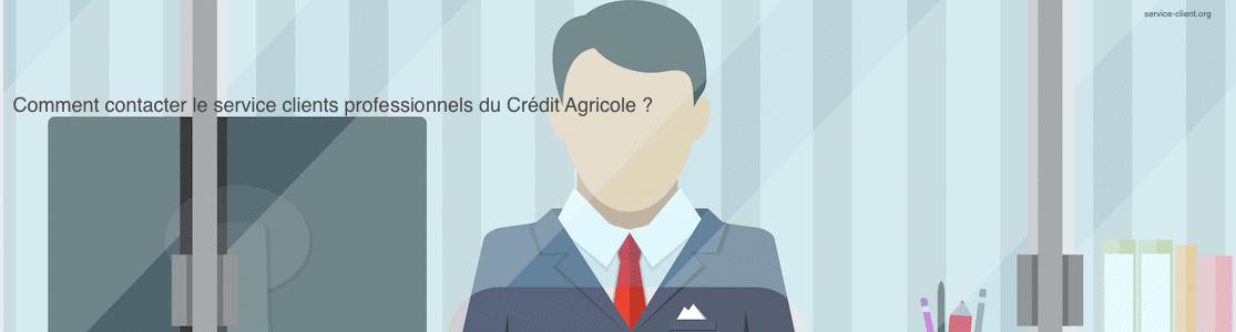 Comment contacter le service client pour les professionnels du Crédit Agricole ?